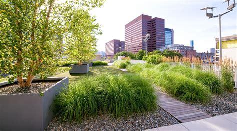 rooftop landscape design zen associates rooftops