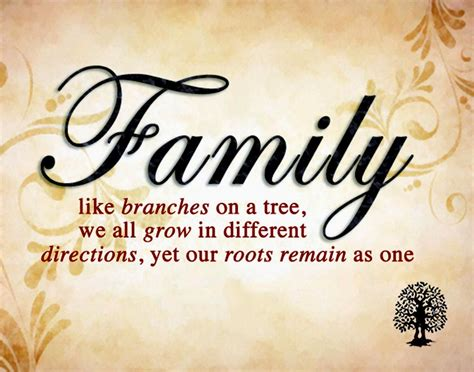 Quotes About Family Mikaelson Family Quotes Quotesgram