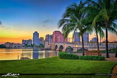 Palm Beach West Skyline Tree Coconut Aanr