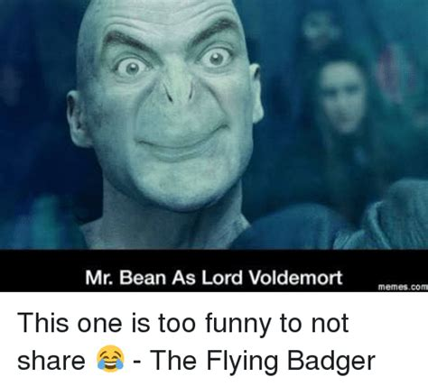 Voldemort Memes - 31 funniest voldemort memes that will make you laugh uncontrollably
