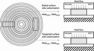 Annual Ring Orientation In Specimens Related To Heating