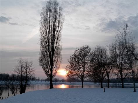 images landscape tree nature snow cold winter