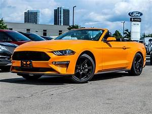 2019 Ford Mustang EcoBoost Premium Convertible RWD for Sale in Kingston, ON - CarGurus