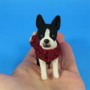 Miniature Boston Terrier