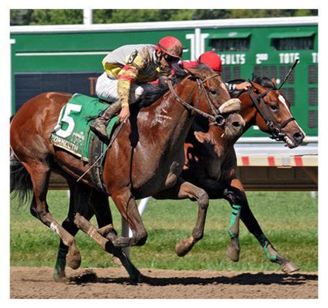 racing ocala fl ranches farms thoroughbred
