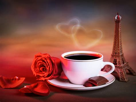 red rose cup  coffee love hearts warm style