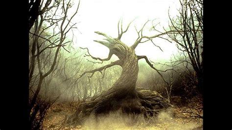 aphex twin tree youtube