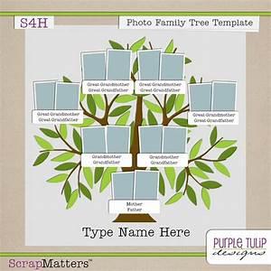 Purple Tulip Designs  Photo Family Tree Template