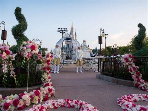 Get Married And Live At Disney World