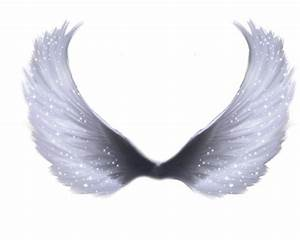 Images For > White Angel Wings Png | Angels | Pinterest ...