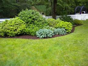 bush ideas garden design garden design with landscaping plants newsonair org gardens pinterest