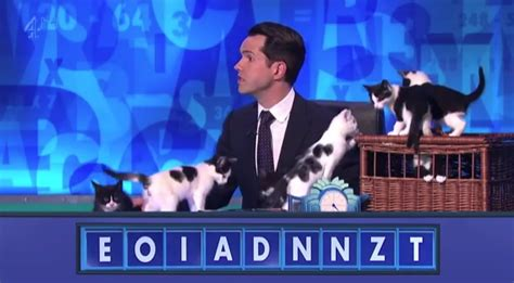 kittens   british game show jimmy carr