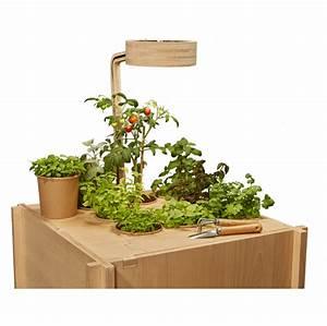 Mini Potager D Intérieur : ciel mon radis potagers d 39 int rieur pour la maison et ~ Dailycaller-alerts.com Idées de Décoration