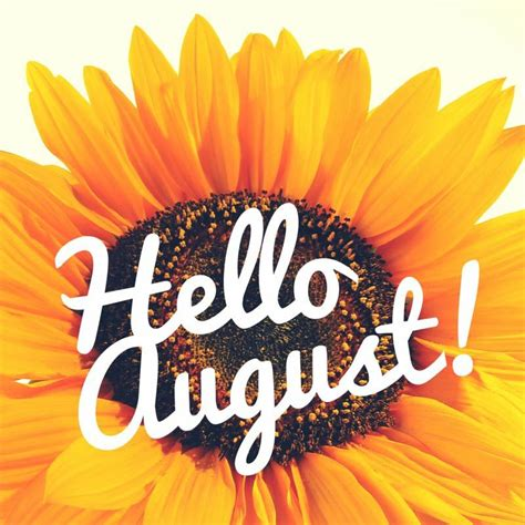 August | Hello august, August images, Hello august images
