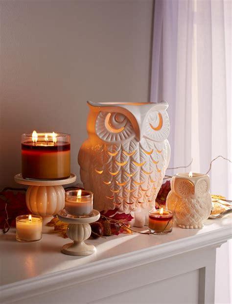 add owls   home decor  ideas shelterness