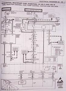 Fuel Pump Wiring Diagram 05chevy Impala