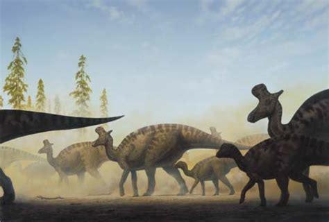 lambeosaurus dinosaur  information dinosaur gallery
