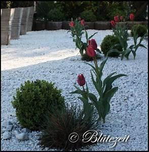 Weiße Steine Garten : weisse ziersteine reinigen mischungsverh ltnis zement ~ Lizthompson.info Haus und Dekorationen