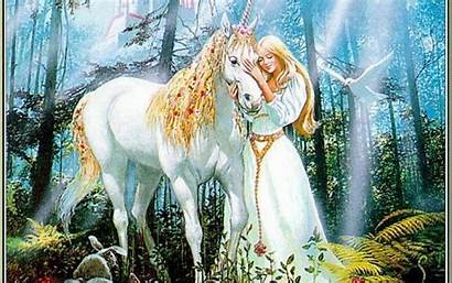Fairies Unicorns Magical Background Wallpapers Backgrounds Wallpaperaccess