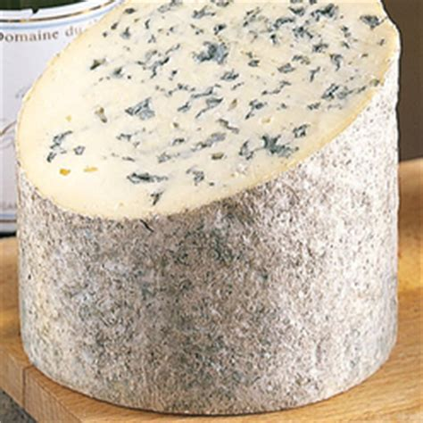 fourme a pate pressee fourme d ambert fromage 224 p 226 te persill 233 e aoc aop