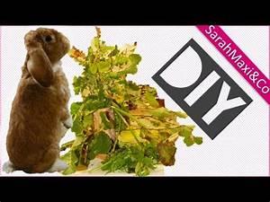 Futter Für Wildvögel Selber Machen : kaninchen futterbaum selber bauen machen basteln diy ~ Michelbontemps.com Haus und Dekorationen
