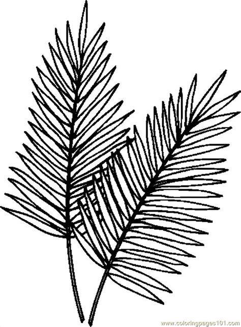 palm leaves coloring page  holidays coloring pages