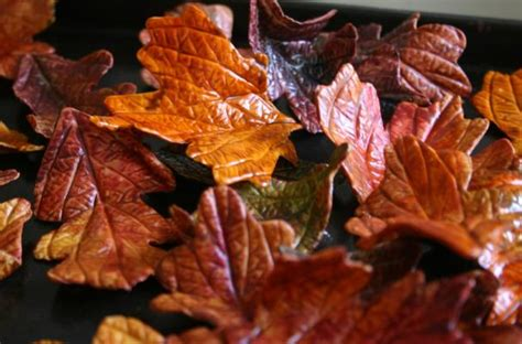 edible fall leaves foodista edible autumn leaves are perfect for fall cakes