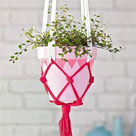 plantes de bureau sans soleil plantes de bureau sans soleil stunning jolies plantes