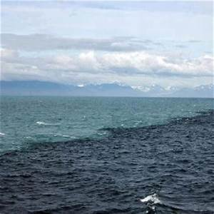 Baltic meets north sea | Baltic | Pinterest