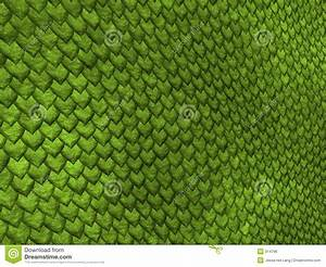 Reptile Scales Vector Clipart - Clipart Suggest