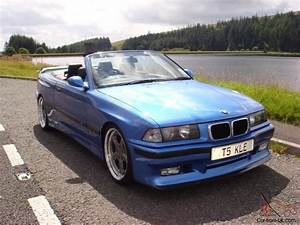 Bmw E36 Differential Diagrams  Bmw  Free Engine Image For