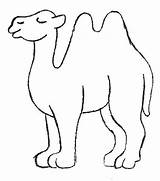 Camel Coloring Printable Pages Crafts Craft Coloringpagesabc Egypt Preschool Sheets Outline sketch template