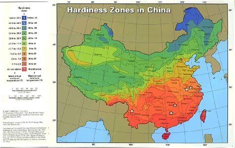 gardening zones gardening zone map australia garden ftempo