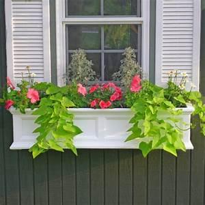Badezimmer Pflanzen Ohne Fenster : blumenkasten f r balkon verwandeln sie ihren balkon in einen garten ~ Bigdaddyawards.com Haus und Dekorationen