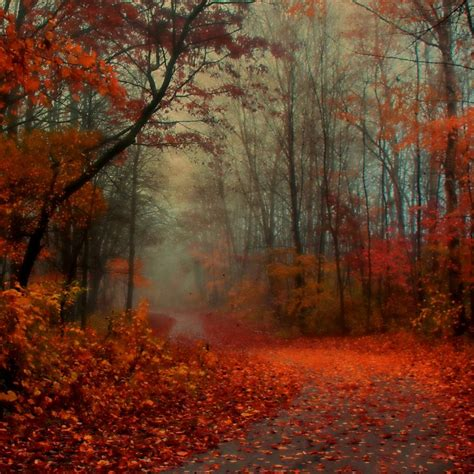 Autumn Lock Screen Wallpapers by Autumn Air Wallpaper Choose