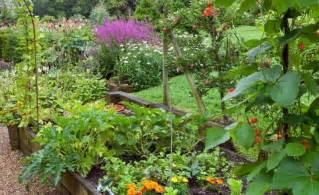 Perennial Vegetable Plants
