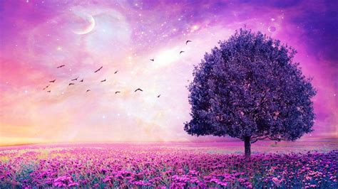 Purple Aesthetic Home Screen PC Wallpapers - Wallpaper Cave
