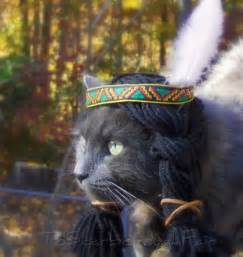 costume for cats cat costume indian headdress