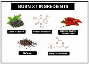 Does Burn Xt Actually Burn Fat  An Evidence