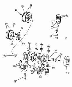 Dodge Dakota Bearing  Pilot  Manual Transmission