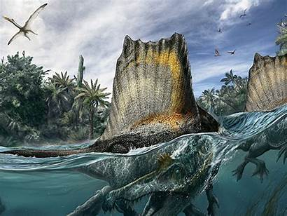 Geographic Spinosaurus National Cretaceous Giant Lost Todaytix