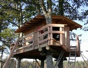 Constructeur Cabane Dans Les Arbres : cabanes dans les arbres ~ Dallasstarsshop.com Idées de Décoration
