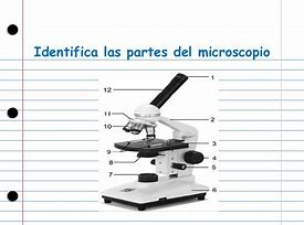 Hd wallpapers blank diagram of a microscope animated wallpaperoxzdd hd wallpapers blank diagram of a microscope ccuart Image collections