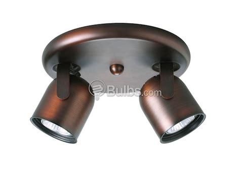 two light ceiling mount back directional light