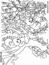Coloring Panda Giant Clip Popular Clipart Animal Animals Library sketch template