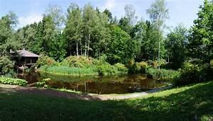 Switzerland, Parks, Pond, Trees, Grass, Park, Seleger, Moor, Nature, Wallpapers, Hd, Desktop, And