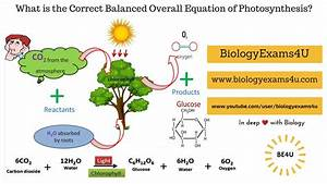 How We Get The Correct Balanced Overall Equation Of