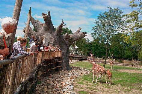 zoo savanna tropical zoos rotterdam blijdorp houthoff project concept exhibit nederlands diergaarde