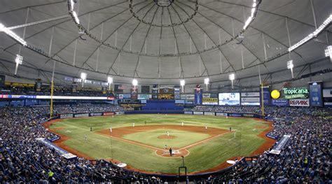 rays       rays baseball