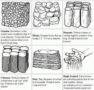 Soil Structure  U00bb Blackhillsgarden Com